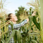 O plantio acabou e agora, o que fazem os agricultores?