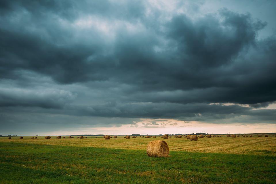 Tudo que Você Precisa Saber Sobre Variabilidade Climática e Agricultura de Precisão