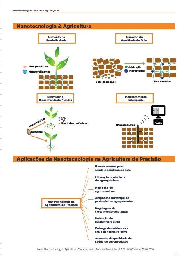 aplicaçao nanotecnologia na agricultura