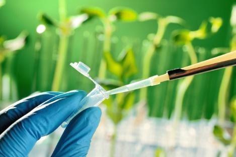 nanotecnologia-na-agricultura