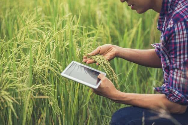 o uso da tecnologia na agricultura-1