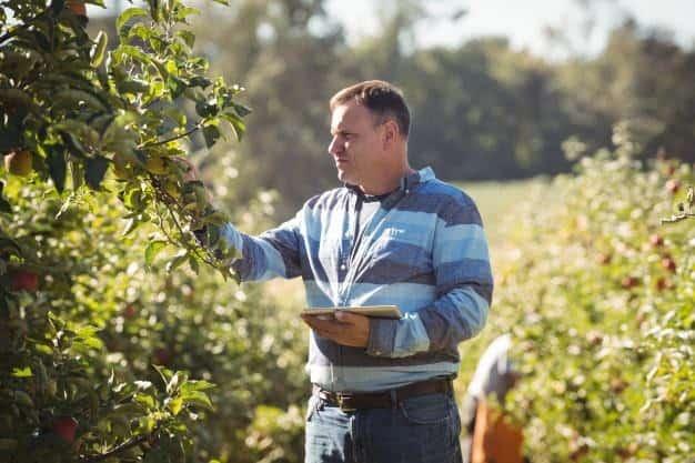o uso da tecnologia na agricultura