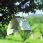 Quais armadilhas para pragas agrícolas você deveria usar?