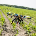 Uso de drones na agricultura vale a pena?