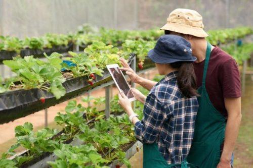 tipos de tecnologia na agricultura