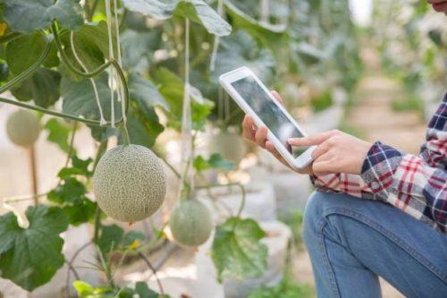 tipos de tecnologia na agricultura2